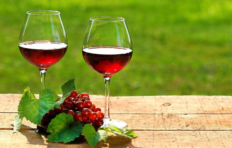 Barbera Sarda wine