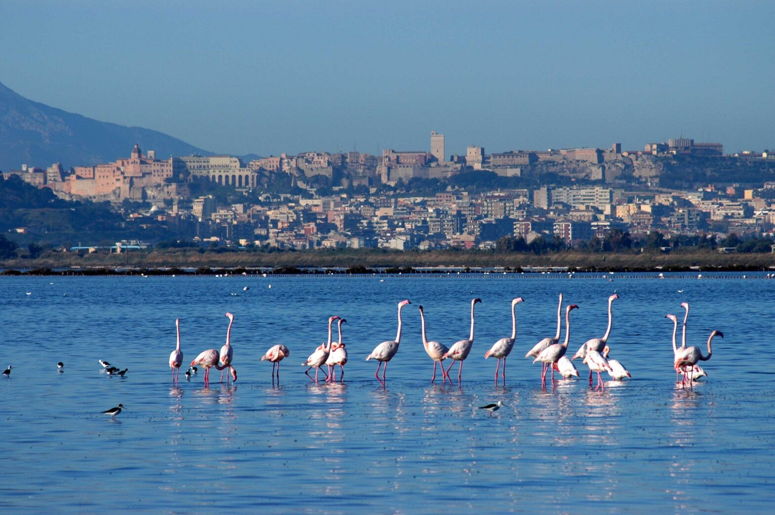 Day Tours of Cagliari: Visit Cagliari By Tours and Excursions at Sella del Diavolo, Poetto beach, Molentargius.. Excusion by boat, Bike Tours, Cooking Experience