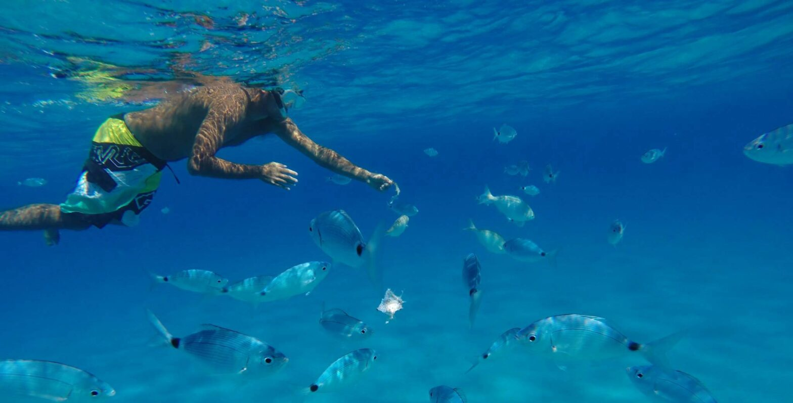 Snorkeling Tour Villasimius